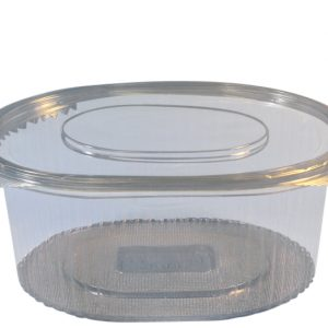 1000cc salad hinged container
